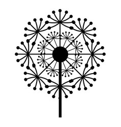 natural dandelion icon simple style vector image