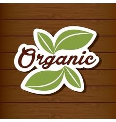 Organic and natural design vector