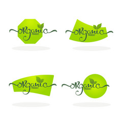 Organic product natural and vegan lettering for vector