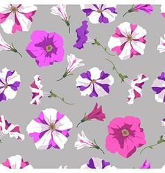 Seamless texture of petunia vector