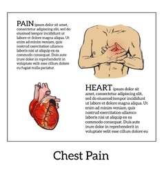 Pain in the heart of a man vector image