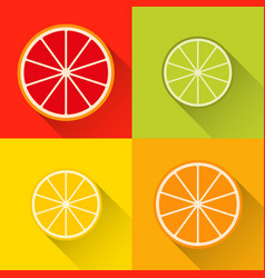 collection of citrus slices icons grapefruit vector image