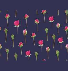 flower in bloom buds roses seamless pattern vector image