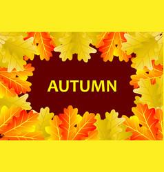 autumnal leaf of oak vector image