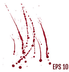 Blood splatter painted isolated on white vector
