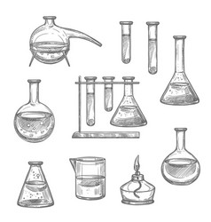 chemical laboratory glass and equipment sketch vector image