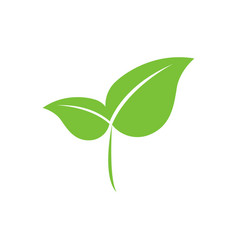 eco-friendly green leaf vector image
