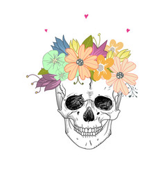 human skull and flower vector image