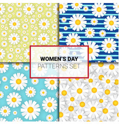 set of seamless pattern with chamomile flowers vector image