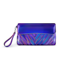 Stylish womens blue handbag vector