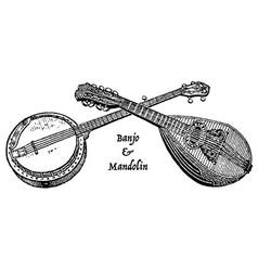 vintage engraving a banjo and mandolin vector image