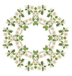 White blossom ornament vector