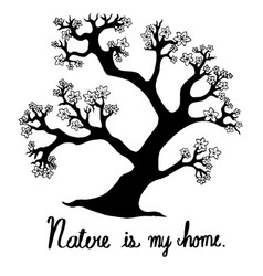 hand drawn trees are hand drawing a doodle style vector image vector image