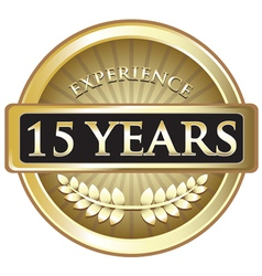 Fifteen Years Experience Gold vector image