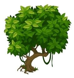 Green tree with lush foliage closeup vector image
