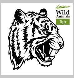 tiger head animals asia series art vector image