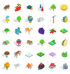 Tree icons set isometric style vector