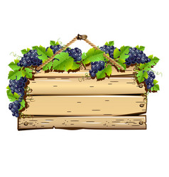 old wooden signboard with grapes vector image