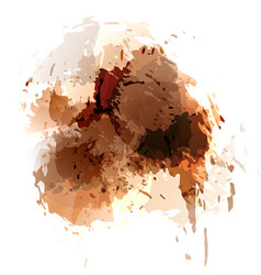 browh contemporary splatter background template vector image vector image