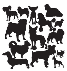 decorative dogs vector image