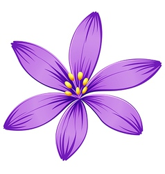 A five-petal purple flower vector