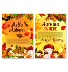 autumn hello fall seasonal greeting card vector image