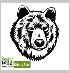 Grizzly bear head mascot - bear head vector