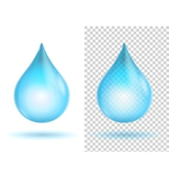 water transparent drops vector image