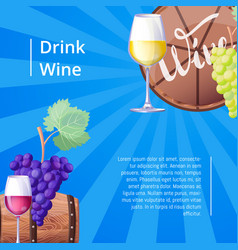 drink wine poster with text vector image