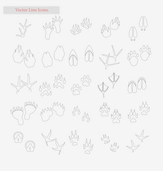 foot set style line icons on white vector image vector image