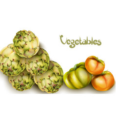 artichokes and green tomatoes watercolor grocery vector image