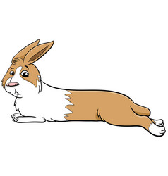 cartoon lying dwarf rabbit comic animal character vector image
