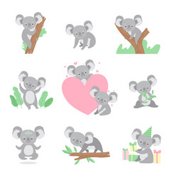 collection of cute coala bear animals cartoon vector image