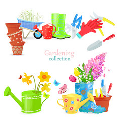 lovely natural collection of spring composition vector image