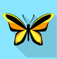 orange black butterfly icon flat style vector image