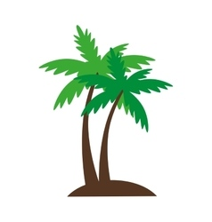 Palm summer beach vector