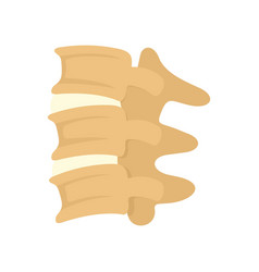 Spinal column discs icon flat style vector