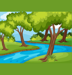 forrest scene with river run through vector image vector image