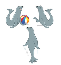 seal poses vector image vector image