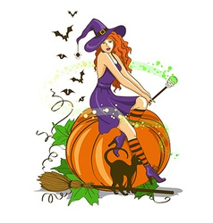 Beautiful witch sitting on the pumpkin vector