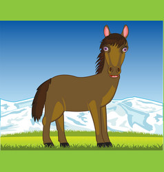 Horse on pasture vector