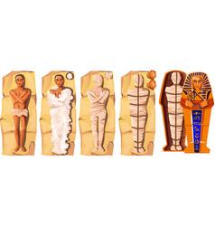 Mummy creation cartoon vector