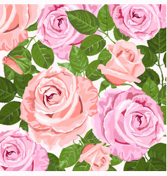 pink and beige roses floral background vector image