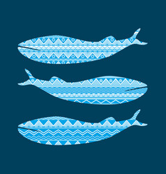 Whale with pattern ethnic style tribal textiles vector