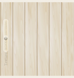 Wood background- texture of light brown beige vector