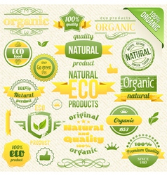 Eco Bio Labels and Elements vector image vector image