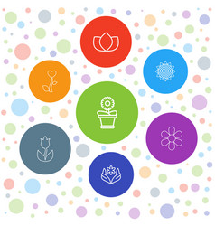7 floral icons vector