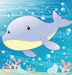 Baby Whale vector image