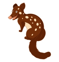 Cartoon smiling Quoll vector image
