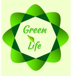 Green Eco icon vector image
